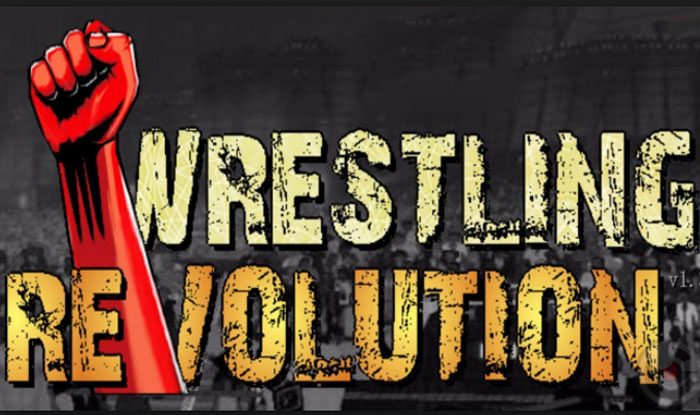 Wrestling Revolution 3D Apk for Android